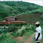 A New Framework for Evaluating Agrarian Development