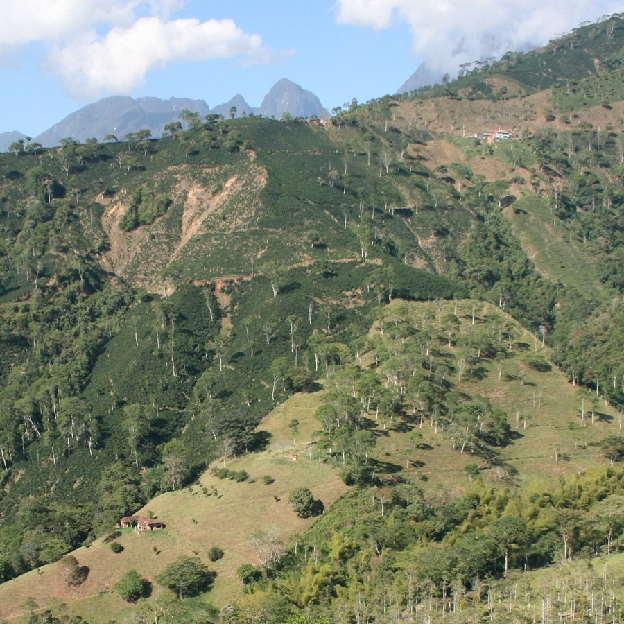 Conservation Incentive Programs for Latin America