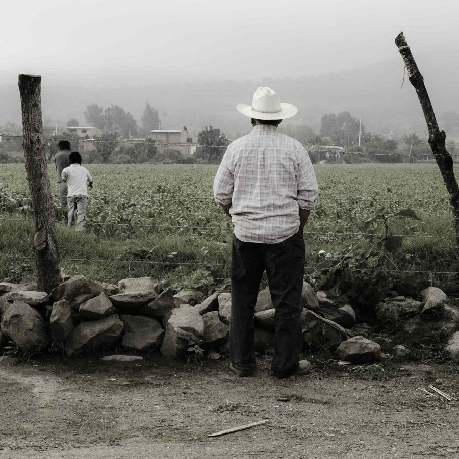 Stay or Go? How Environment Affects Migration in Mexico