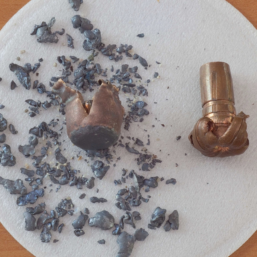 Get the Lead Out: Alternative Ammunition Can Solve a One Health Conundrum