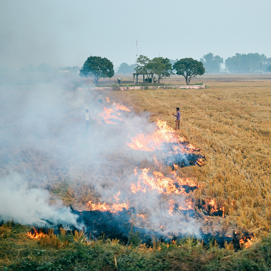 Bending Agricultural Burning Trajectories in Eastern India
