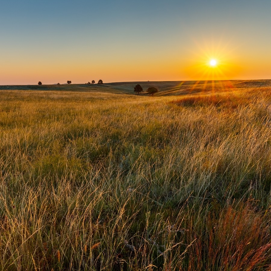 Protecting Biodiversity and Air Quality on the Prairie