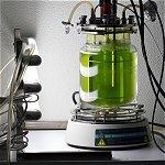 Algal Bioreactors for Biofuel Production