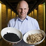 Environmental, Energetic and Economic Potential of Biochar