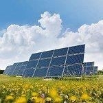 "A Solar Cell Using Inorganic ""Grass"""