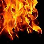 Micropowdered Biomass Combustion