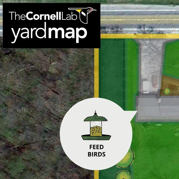 Expanding Bird Habitats at Home