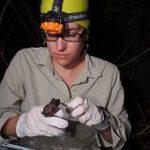 2013 Sustainable Biodiversity Fund