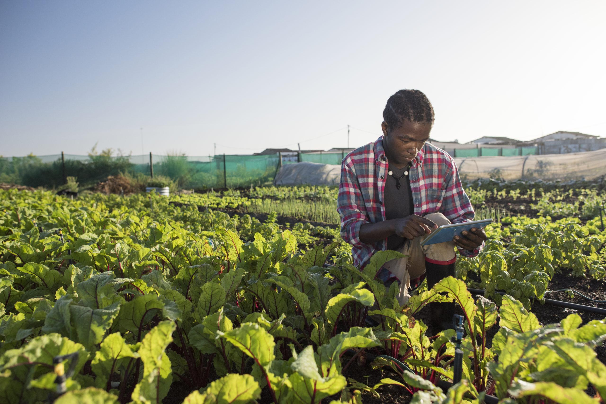 food farming technology