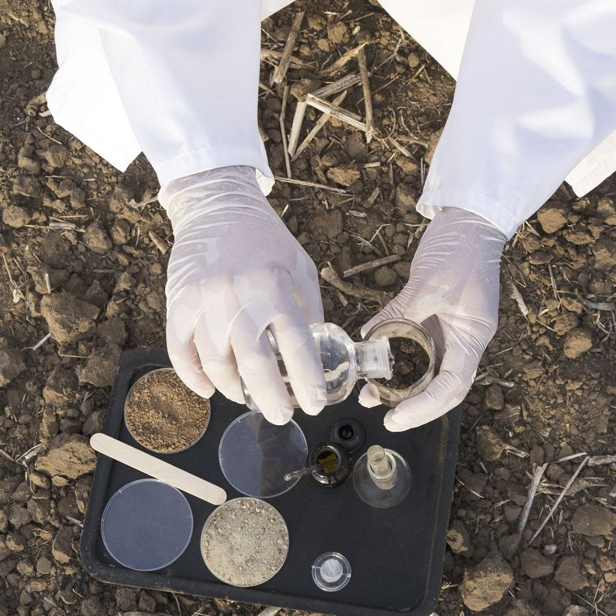 scientist in the field