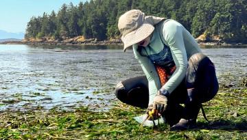 researcher sea grass